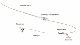 Ловля на сбирулино- бомбарду теория и практика. Catching on sbirulino, theory and practice.