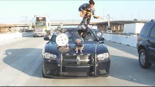 Freeway Band - Aaron's Animals - Video Youtube
