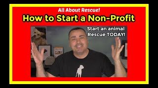How to start an animal rescue. How to start a non profit animal rescue