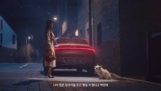[오피셜] [광고] 그랜저, 2021 성공에 관하여 유기견 입양