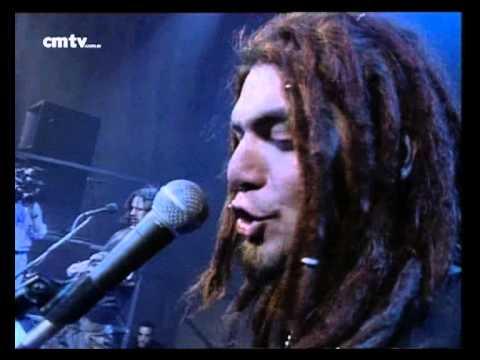 Animal video Milagro - CM Vivo 1998