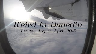 preview picture of video 'Weird in Dunedin - Travel Vlog // Say Cheese Louise'