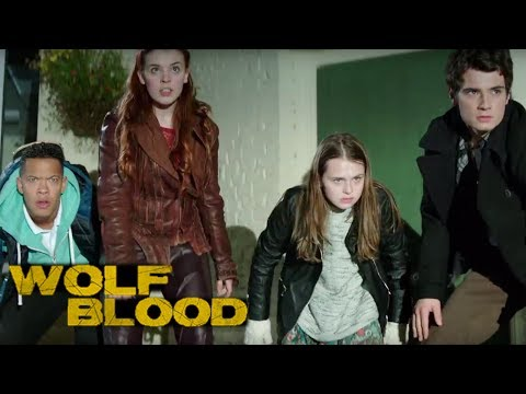 Download WOLFBLOOD S4E1 - Captivity (full Episode) HD Mp4 3GP Video and MP3
