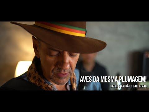 Carlos Magrão - Aves Da Mesma Plumagem