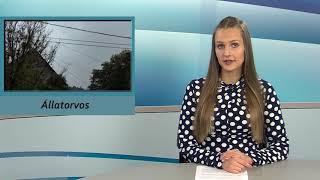 TV Budakalász / Budakalász Ma / 2020.11.16.