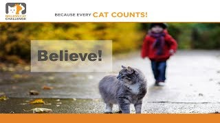 Million Cat Challenge: Believe in Saving Lives - webcast