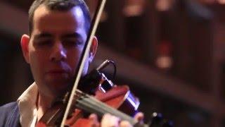 Violin Reception