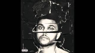 The Weeknd   Shameless