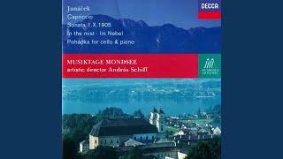 Janácek: In the Mists, JW 8/22 - 1. Andante