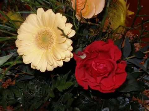 Adam Aston - Kwiaty, czy wy wiecie (tango)