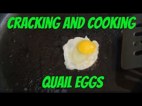 Video How to Crack and Cook Quail Eggs