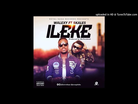 VIDEO+AUDIO: Walexy – ILeke ft. Skales