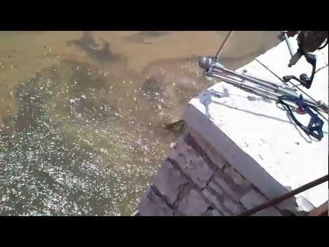 Ψάρεμα στην λίμνη