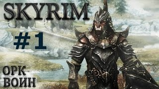 Воин Скайрима (TES V:Skyrim) #1 На волю! В пампасы!