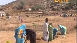 Eritrean Tigrinya News  29 April 2013 - Eritrea TV