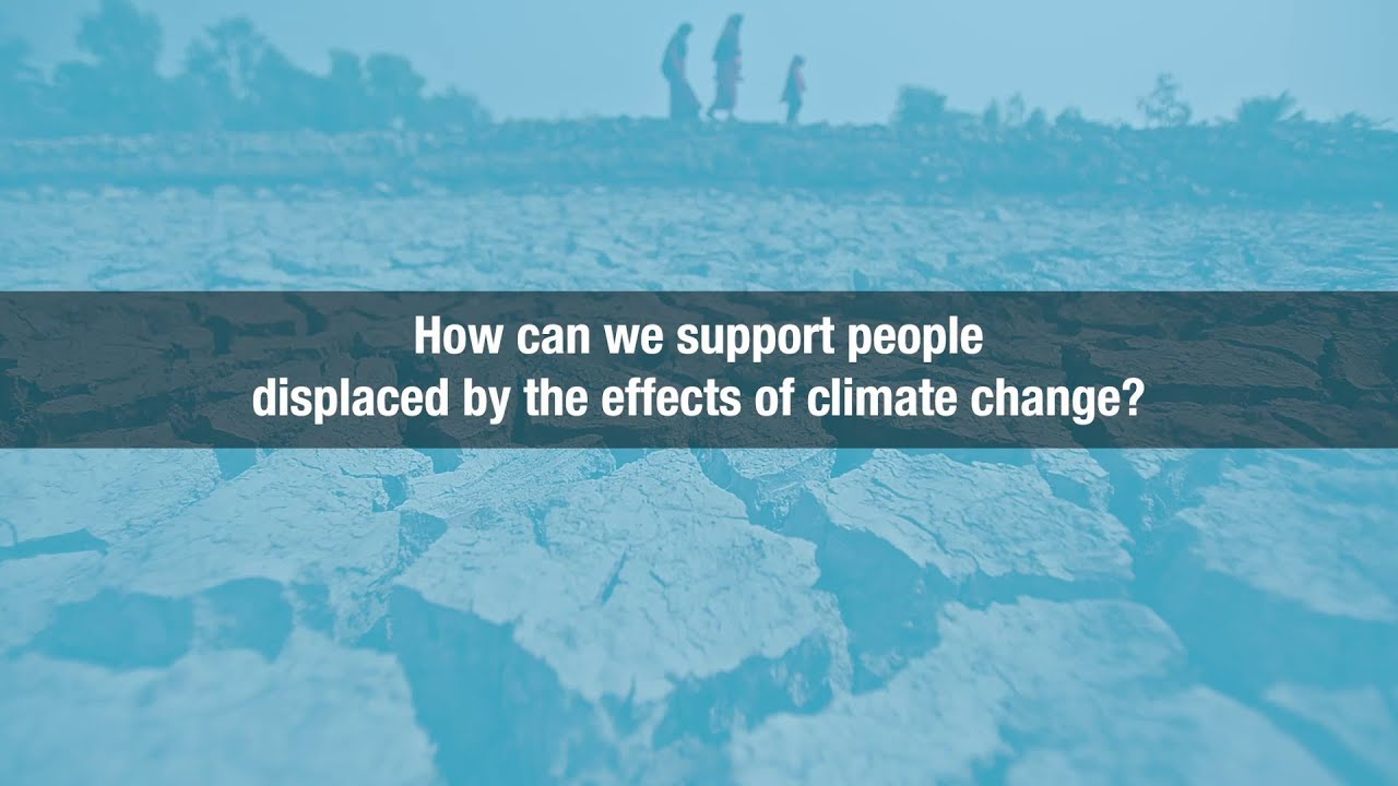 Video thubmnail: Climate Solutions from Bangladesh: Climate Bridge Fund