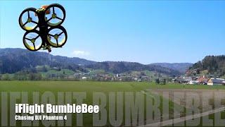 IFlight BumbleBee Chases DJI Phantom 4