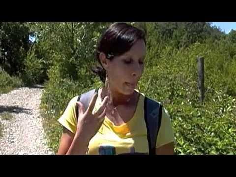 Obninsk concentra la cura di alcolismo