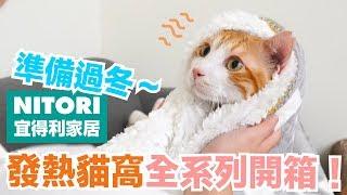 毛茸茸好過冬!宜得利發熱貓窩全系列開箱【好味貓開箱】EP6