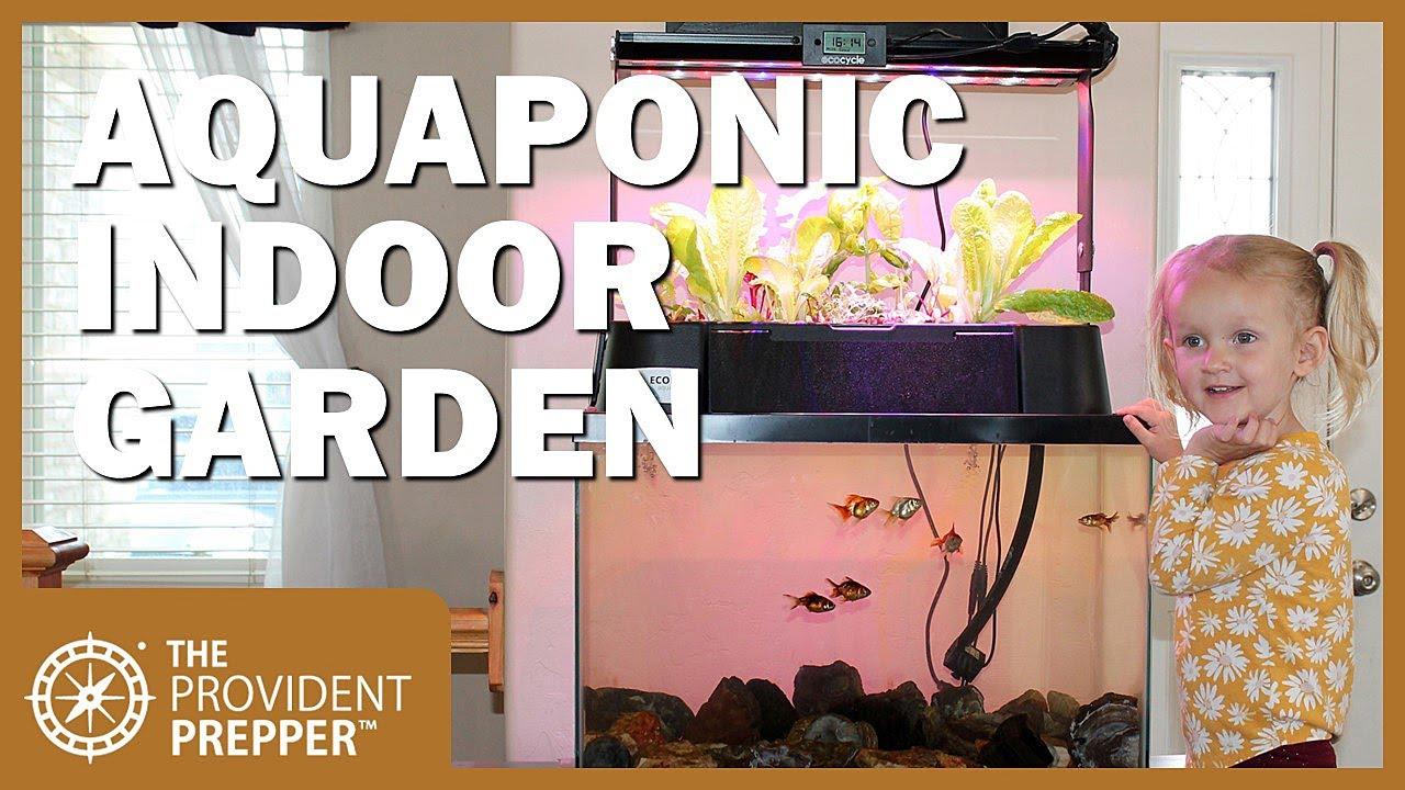 ECO-Cycle Aquaponics Indoor Fish Tank Review thumbnail