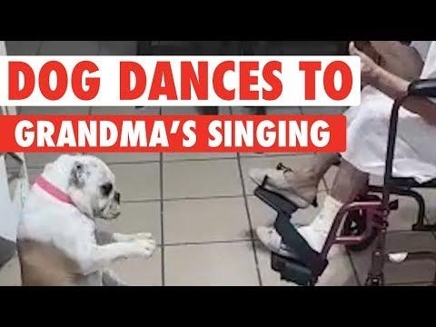 Dog Dances to Grandma's Singing