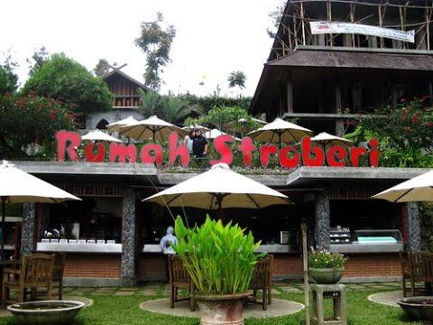 Video Mari Kunjungi Beberapa Tempat Wisata Anak yang Edukatif di Bandung!