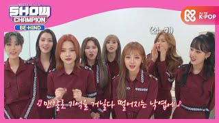 Show Champion Behind EP183