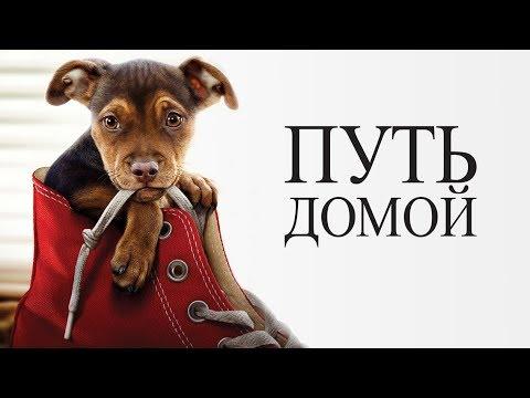 Путь домой - Русский трейлер (2019)🐕🐕