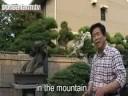 Video Kimura nói về cây thông núi