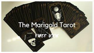 Marigold Tarot: First Look