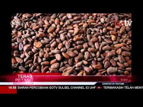 Video Manfaat Buah kakao