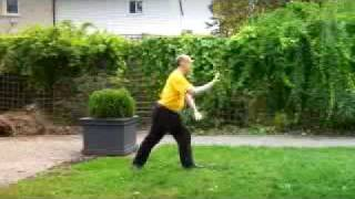 Tai Chi Form view from Back