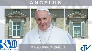 Angelus: Jesus não nos tira a cruz, mas a carrega conosco