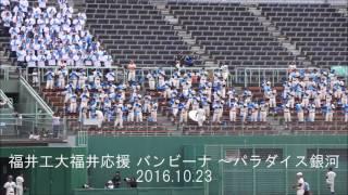 福井工大福井応援「バンビーナ~パラダイス銀河」 2016.10.23