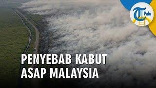 Indonesia Dituduh Penyebab Kabut Asap di Malaysia