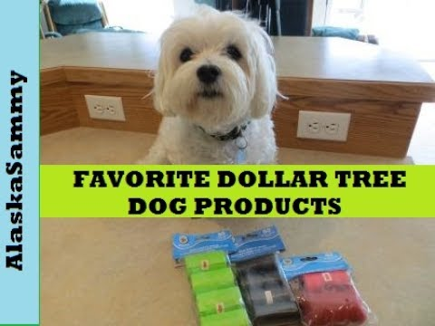 Favorite Dollar Tree Dog Products
