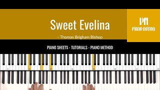 Sweet Evelina