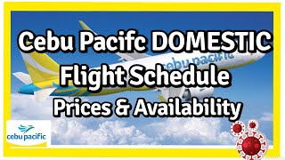 Cebu Pacific Domestic Flight Schedules with Prices & Availability (Philippines Travel Update)