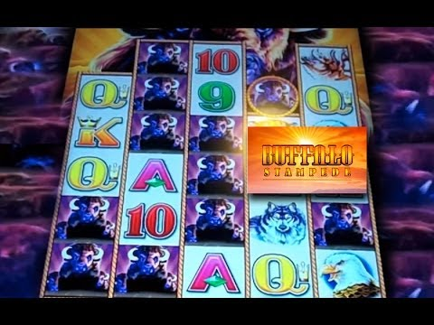 Buffalo stampede slot machine jackpot
