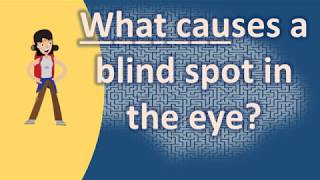 What causes a blind spot in the eye ? | Top Health FAQ Channel