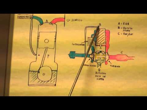 Trattamenti di vaselina di emorroidi
