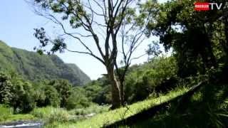 preview picture of video 'Langevin [Ile de la Réunion]'