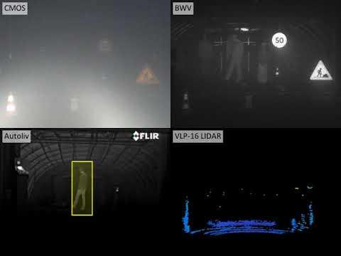 Fog tests
