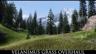 Skyrim SE Mods - Velanimus Grass Overhaul