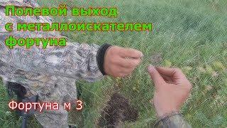 Фортуна м 3 ПОЛЕВОЙ ВЫХОД С МЕТАЛЛОИСКАТЕЛЕМ ФОРТУНА.№ 95