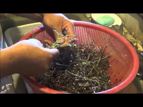 Recipe na may kanela honey tubig para sa pagbaba ng timbang