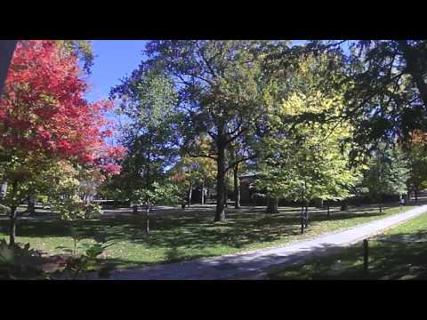 Time-lapse of fall colors at Princeton