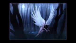 Where There Are Angels.wmv by Nicole Bell