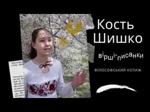 Кость Шишко. Філософський колаж. - YouTube