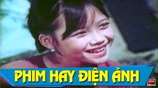 Đàn Chim Trở Về Full HD | Phim Tình Cảm Việt Nam Hay Đặc Sắc